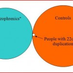 Genetic Protection Against Schizophrenia?